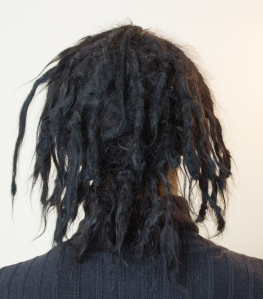 dreadlock timeline 6 months back