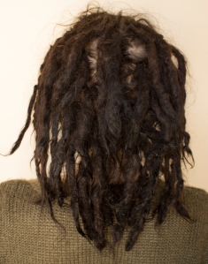 Sarah dreadlock timeline 1.5 year back